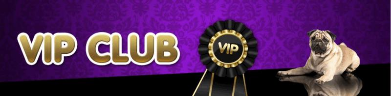 Vernons VIP